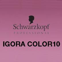 SchwarzfopfIGORA10